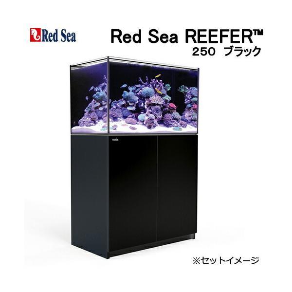 □(超大型)レッドシー REEFER 250 ブラック オーバーフロー水槽 本州四国送料無料・同梱不可・代引不可 3個口 才数700