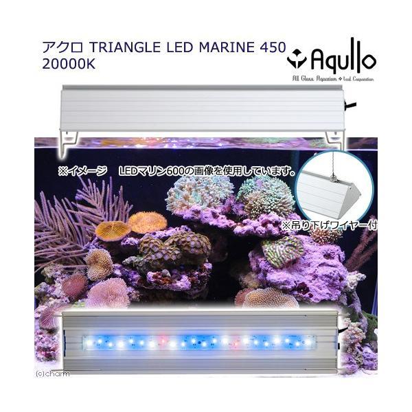 アウトレット品 アクロ TRIANGLE LED MARINE 450 Aqullo Series 訳あり 沖縄別途送料 関東当日便|chanet