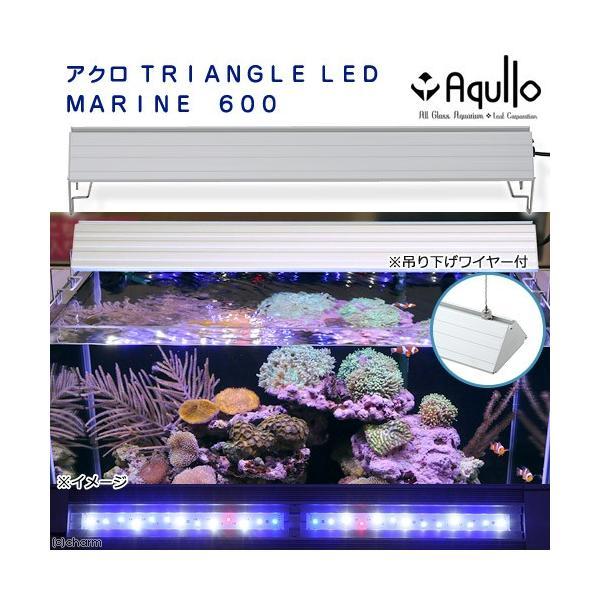 アウトレット品 アクロ TRIANGLE LED MARINE 600 20000K Aqullo Series 訳あり 沖縄別途送料 関東当日便|chanet