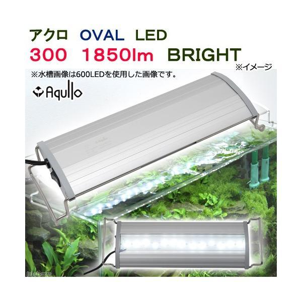 アクロ OVAL LED 300 1850lm BRIGHT Aqullo Series 30cm水槽用照明 ライト 熱帯魚 水草 関東当日便|chanet