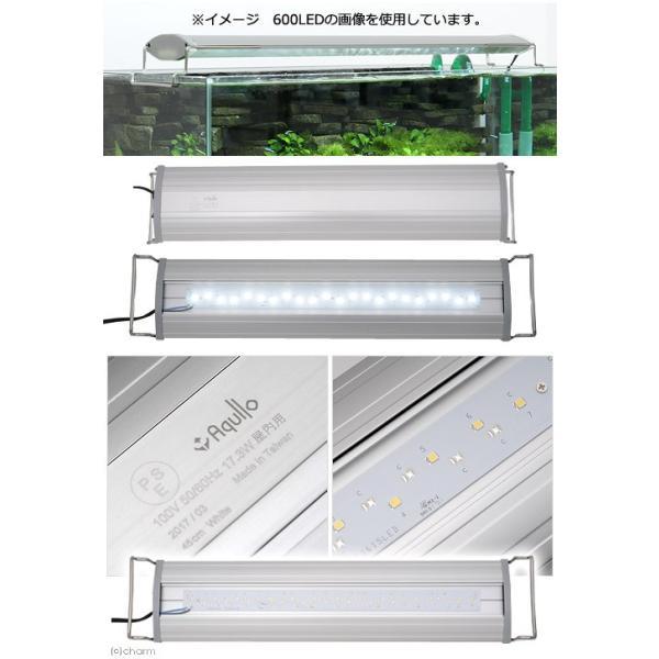 アクロ OVAL LED 450 2750lm BRIGHT Aqullo Series 45cm水槽用照明 関東当日便|chanet|02