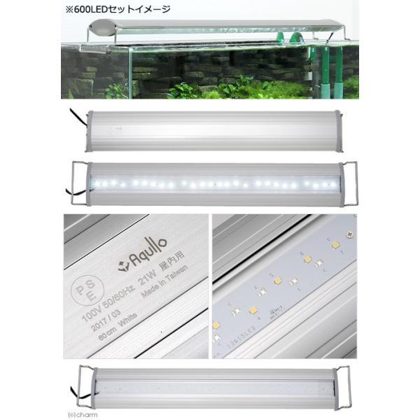 アクロ OVAL LED 600 3250lm BRIGHT Aqullo Series 60cm水槽用照明 沖縄別途送料 関東当日便 chanet 02
