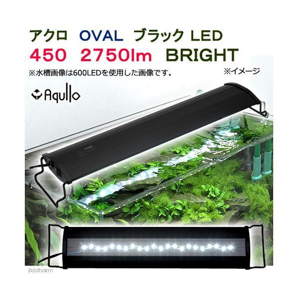 アクロ OVALブラック LED 450 2750lm BRIGHT Aqullo Series 45cm水槽用照明 ライト 熱帯魚 水草 関東当日便|chanet