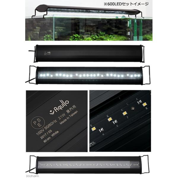 アクロ OVALブラック LED 600 3250lm BRIGHT Aqullo Series 60cm水槽用照明 沖縄別途送料 関東当日便|chanet|02