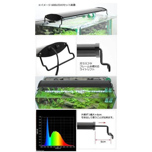 アクロ OVALブラック LED 600 3250lm BRIGHT Aqullo Series 60cm水槽用照明 沖縄別途送料 関東当日便|chanet|03