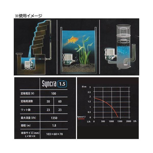 SICCE シッチェ 水陸両用ポンプ シンクラサイレント1.5 流量22.5リットル/分 60Hz 循環ポンプ 沖縄別途送料 関東当日便|chanet|03
