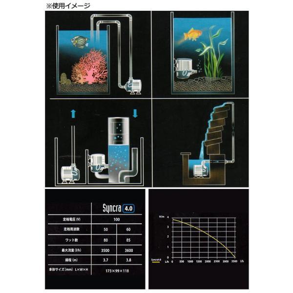 取り寄せ商品 SICCE シッチェ 水陸両用ポンプ シンクラサイレント4.0 流量58リットル/分 50Hz 循環ポンプ 沖縄別途送料|chanet|03