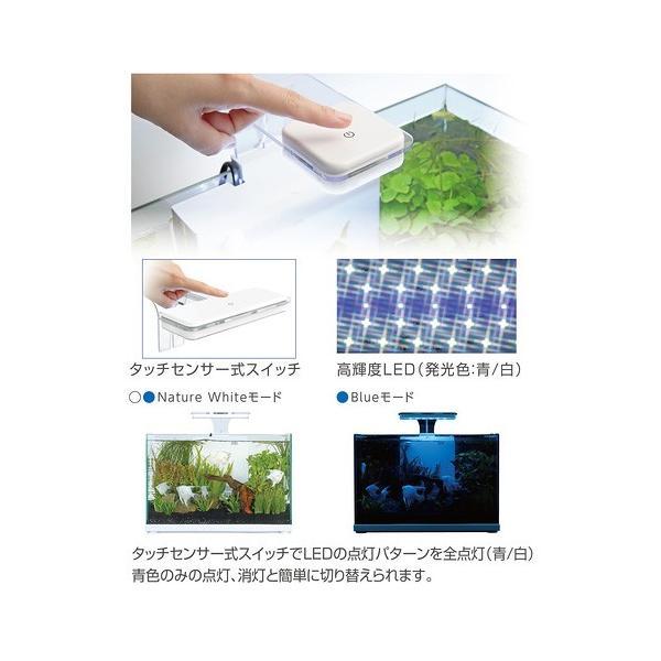 コトブキ工芸 kotobuki アクストLED 22 アクアリウムライト 関東当日便|chanet|04