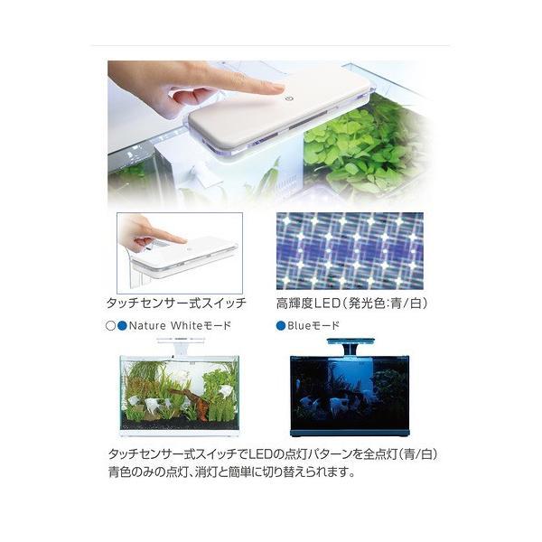 コトブキ工芸 kotobuki アクストLED 36 アクアリウムライト 関東当日便|chanet|04