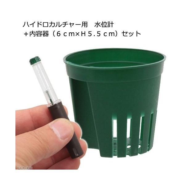 ハイドロカルチャー用 水位計 + 内容器(Φ6cm×H5.5cm)セット