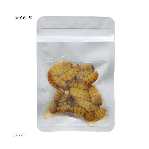 プロバグズ 真空生昆虫 シルクワーム蛹 (15g×10袋入) PROBUGS ECO-FRESHSILKWORM PUPAE 関東当日便|chanet|02