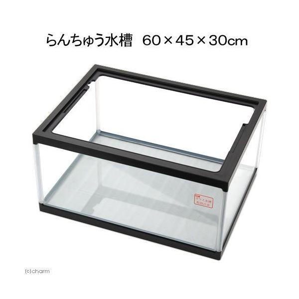 同梱不可・中型便手数料 らんちゅう水槽 60×45×30cm 60cm水槽 金魚 亀 カメ 才数170
