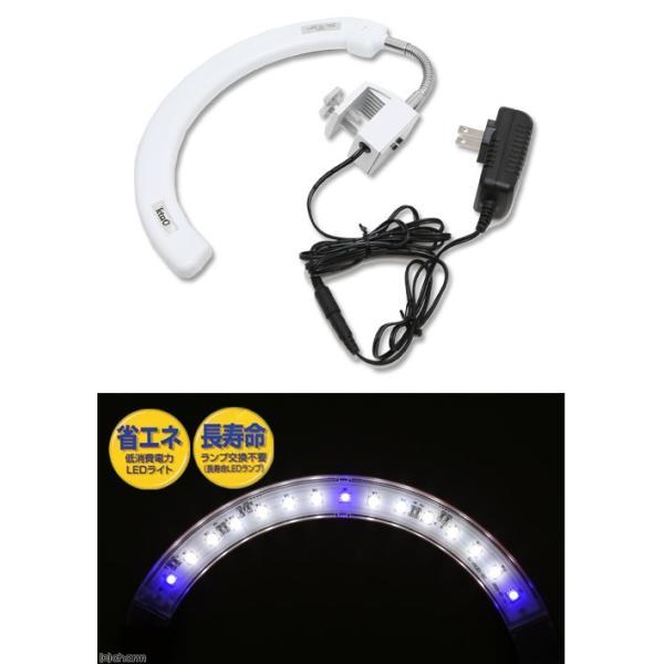 テトラ LEDカーブライト ホワイト LED−CLW アクアリウムライト 関東当日便|chanet|03