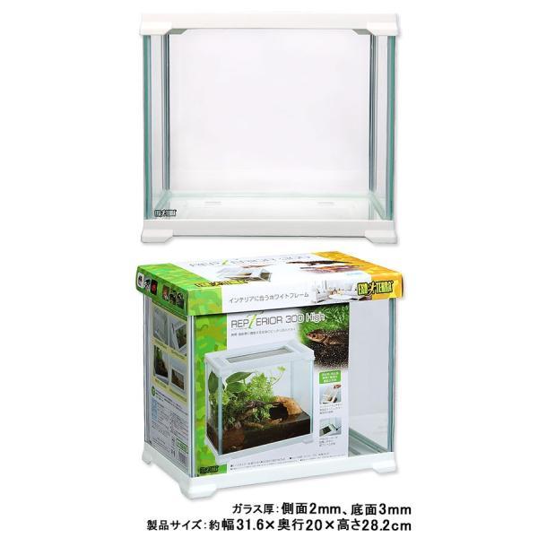 GEX エキゾテラ レプテリア300High 関東当日便|chanet|02