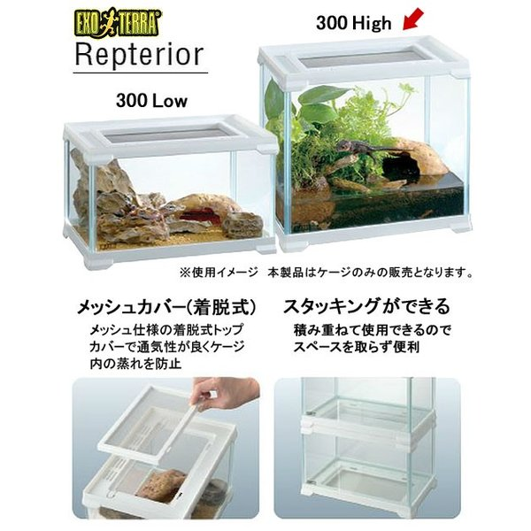 GEX エキゾテラ レプテリア300High 関東当日便|chanet|03