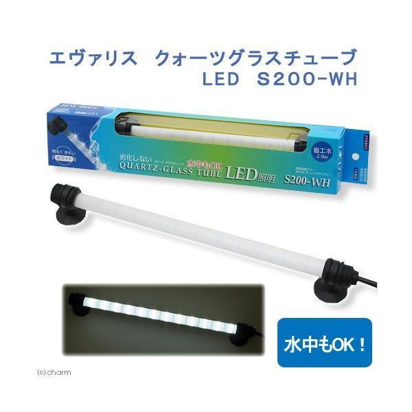 エヴァリス クォーツグラスチューブ LED S200 アクアリウムライト 関東当日便|chanet
