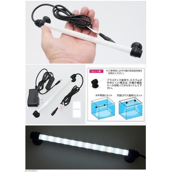 エヴァリス クォーツグラスチューブ LED S200 アクアリウムライト 関東当日便|chanet|02
