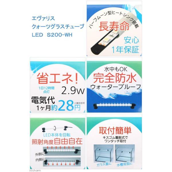 エヴァリス クォーツグラスチューブ LED S200 アクアリウムライト 関東当日便|chanet|03