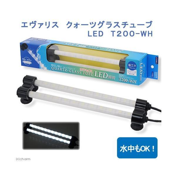 エヴァリス クォーツグラスチューブ LED T200−WH アクアリウムライト 関東当日便|chanet