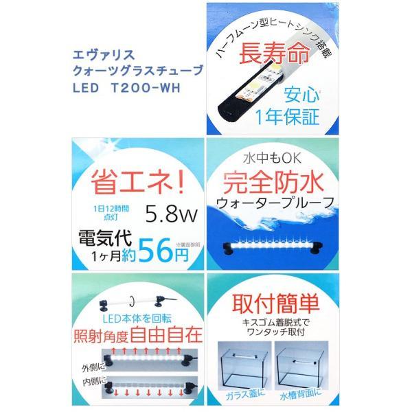 エヴァリス クォーツグラスチューブ LED T200−WH アクアリウムライト 関東当日便|chanet|03