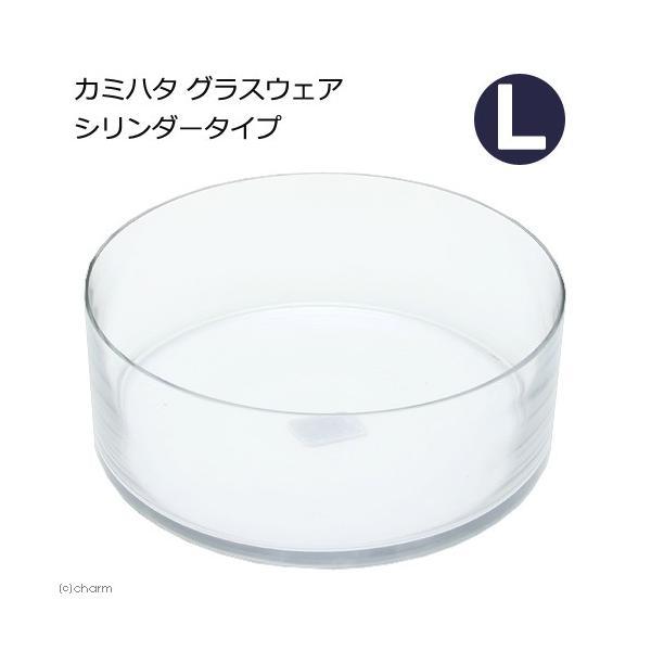 カミハタグラスウェアシリンダータイプL