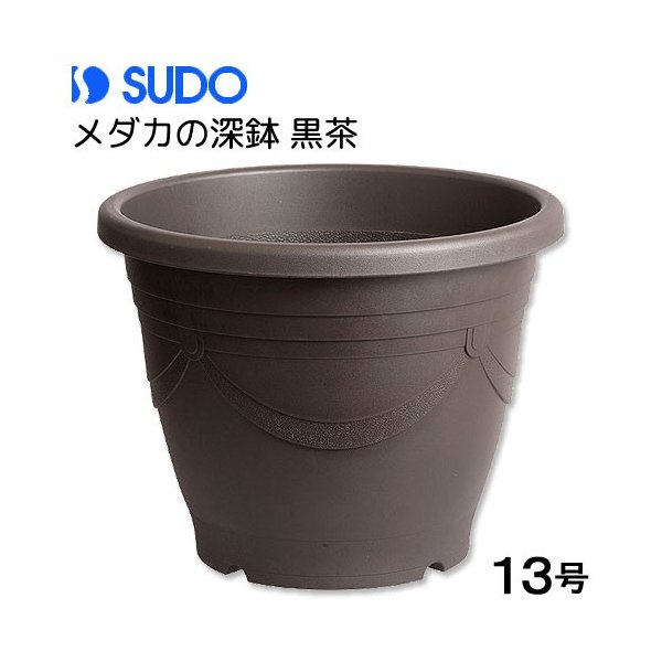 スドーメダカの深鉢黒茶13号お一人様3点限り