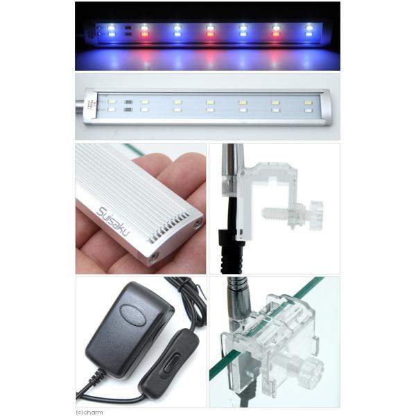 水作 スマート LEDライト A220 BR アクアリウムライト 関東当日便|chanet|03