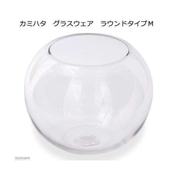 カミハタグラスウェアラウンドタイプM