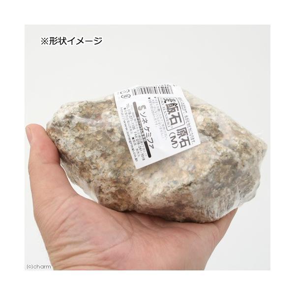 ソネケミファ 麦飯石原石 M 関東当日便|chanet|02