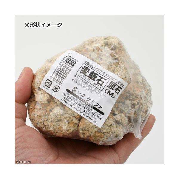 ソネケミファ 麦飯石原石 M 関東当日便 chanet 03