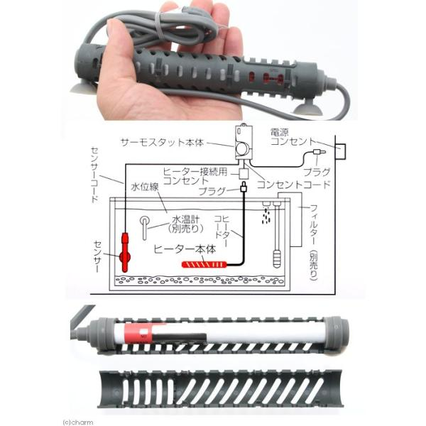 エヴァリス マイクロセーフパワーヒータープラスNX 150 関東当日便 chanet 03