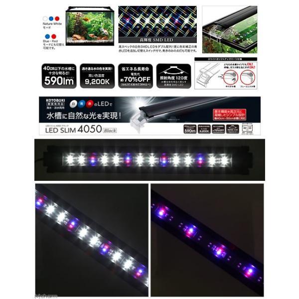 コトブキ工芸 kotobuki LEDスリム 4050 ブラック アクアリウムライト 関東当日便|chanet|02