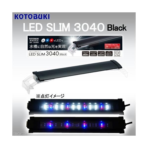 コトブキ工芸 kotobuki LEDスリム 3040 ブラック アクアリウムライト 関東当日便|chanet
