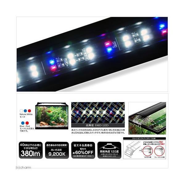 コトブキ工芸 kotobuki LEDスリム 3040 ブラック アクアリウムライト 関東当日便|chanet|02