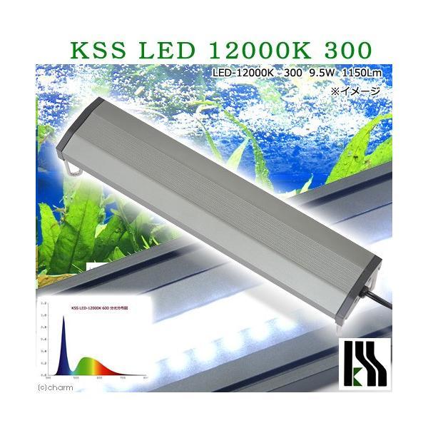 興和 KSS LED 12000K 300 30〜45cm水槽用照明 ライト 熱帯魚 沖縄別途送料 アクアリウムライト 関東当日便|chanet