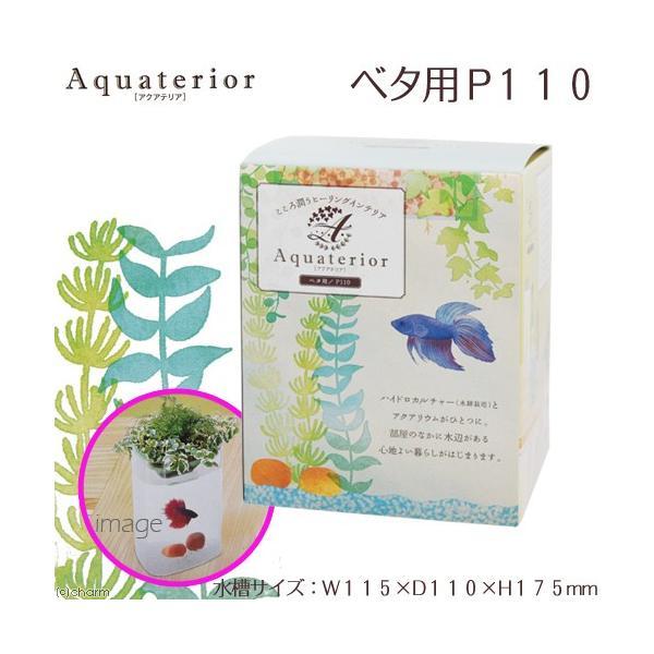 水作アクアテリアベタ用P110水槽ハイドロカルチャー