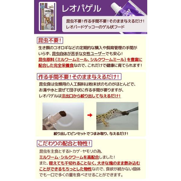 キョーリン レオパゲル 60g 6袋入り 関東当日便|chanet|02
