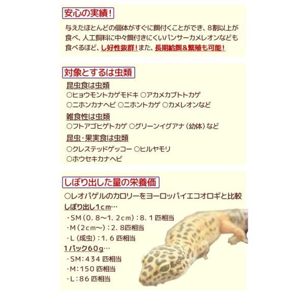 キョーリン レオパゲル 60g 6袋入り 関東当日便|chanet|03
