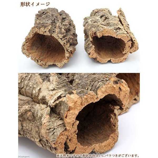 天然バージンコルクカヌー 小(φ20〜25×H30cm) 関東当日便 chanet 02