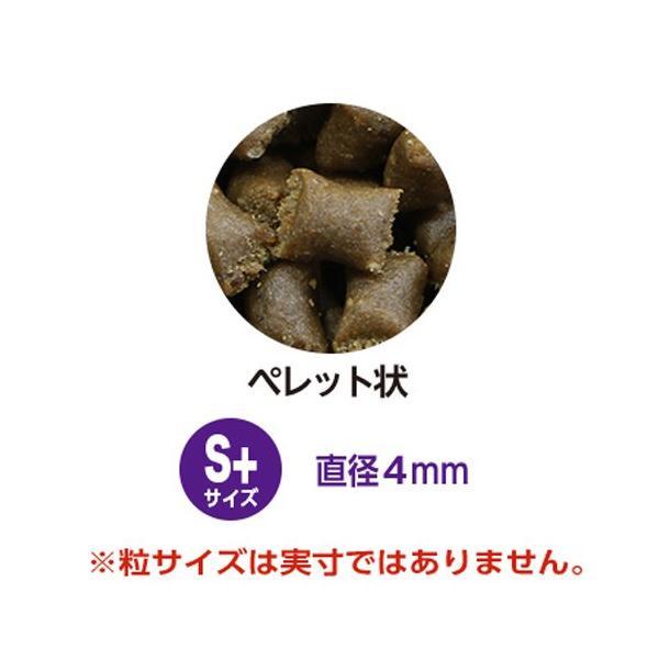 バイタリス アネモネペレット S 50g 関東当日便|chanet|02