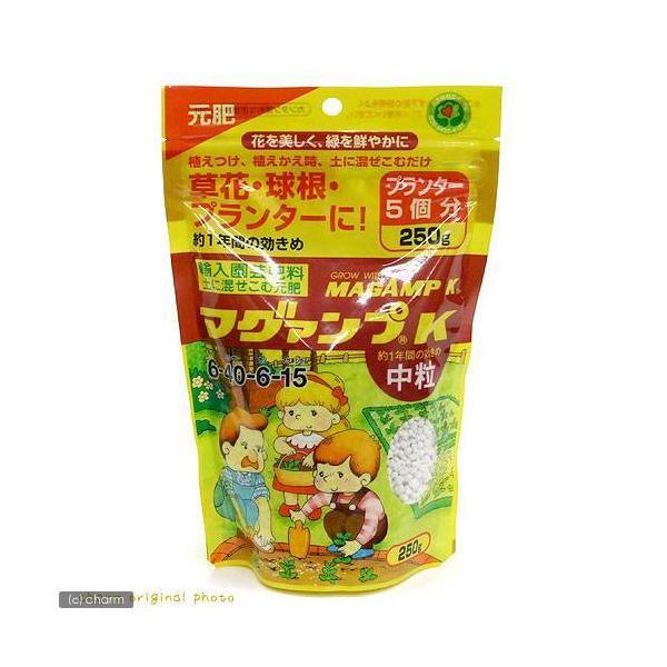 ハイポネックス マグァンプK 中粒 250g 元肥 化成肥料 緩効性肥料 草花 野菜