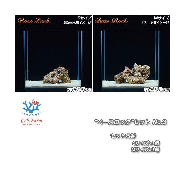 "C.P.Farm直送(海水魚)ライブロック""ベースロック""セット S・Mミックス(0.5個口相当)別途送料 chanet"