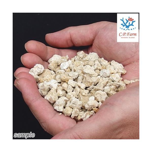 C.P.Farm直送 クラッシュコーラルロック 軽洗浄済み 1kg(約0.7L) 粉砕サンゴ砂(0.12個口相当)別途送料|chanet