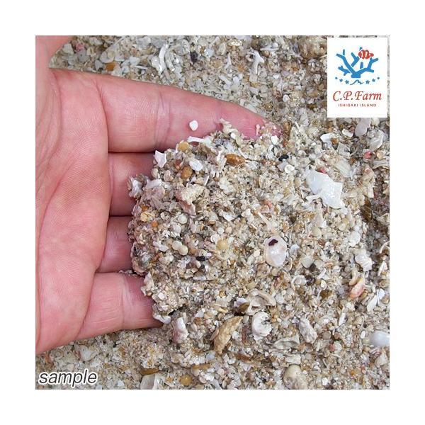 C.P.Farm直送 ライブアラゴナイトサンド 1kg(約0.8L)(0.12個口相当) バクテリア付き サンゴ砂 底砂 別途送料|chanet|02