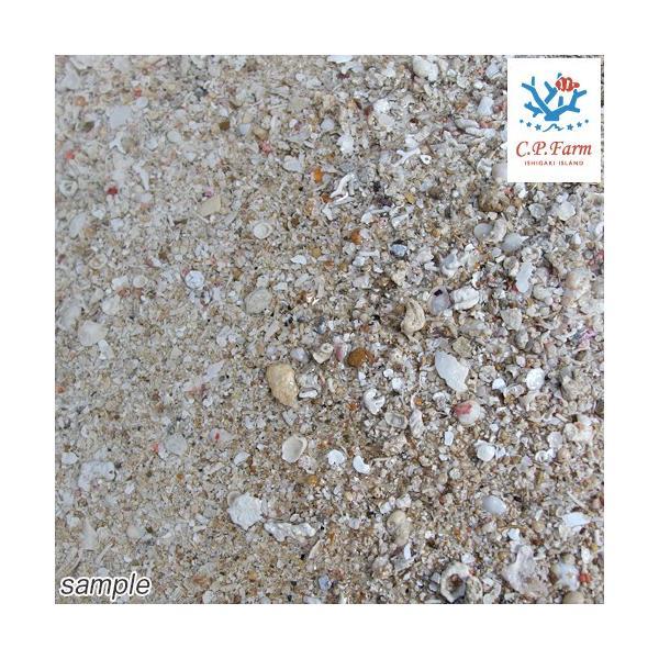 C.P.Farm直送 ライブアラゴナイトサンド 5kg(約4L)(0.32個口相当) バクテリア付き サンゴ砂 底砂 別途送料|chanet