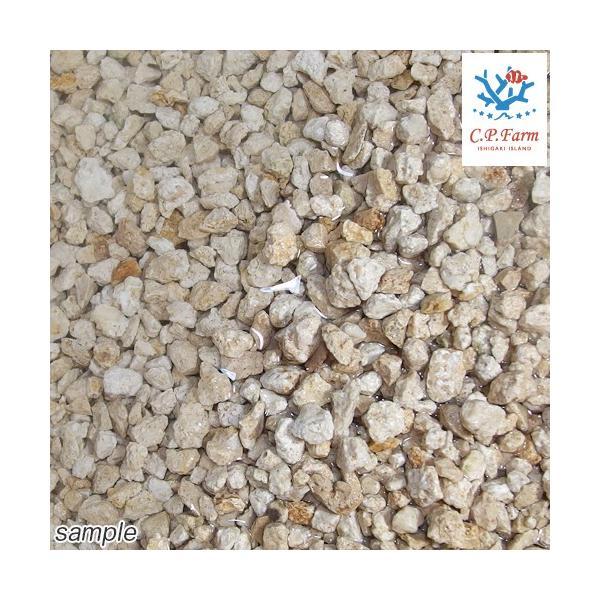 C.P.Farm直送 ライブクラッシュコーラルロック 1kg(約0.7L) バクテリア付き粉砕サンゴ砂(0.12個口相当)別途送料|chanet