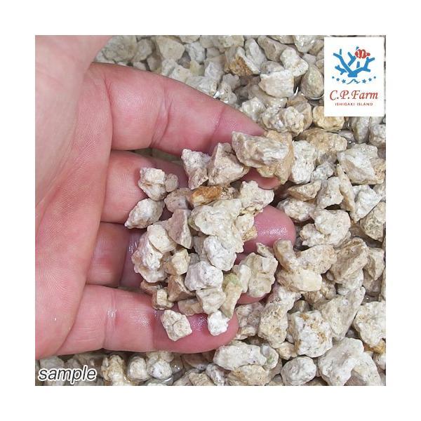 C.P.Farm直送 ライブクラッシュコーラルロック 1kg(約0.7L) バクテリア付き粉砕サンゴ砂(0.12個口相当)別途送料|chanet|02