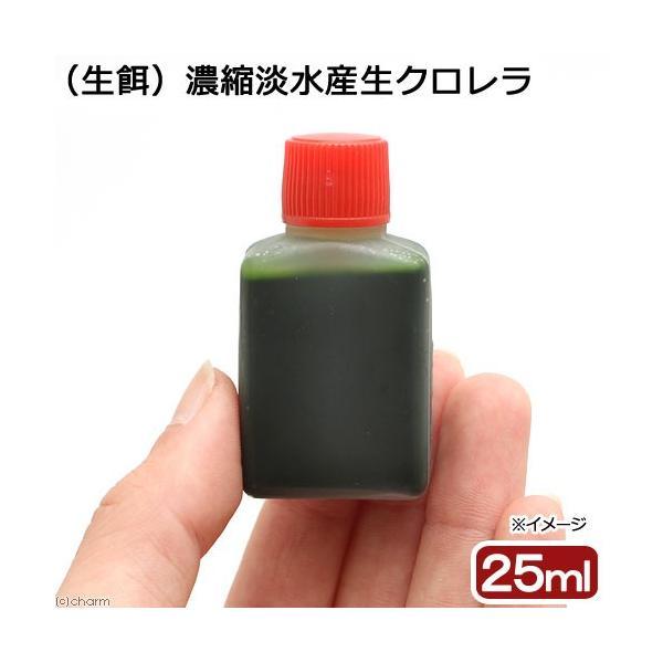 (海水魚)生餌 濃縮淡水産生クロレラ(25ml)|chanet