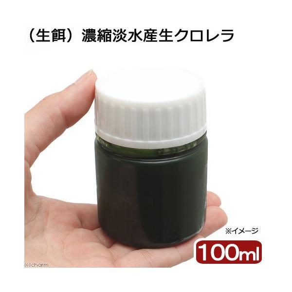 (海水魚)生餌 濃縮淡水産生クロレラ(100ml)|chanet