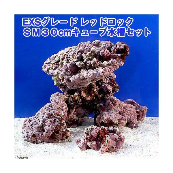 (海水魚)ライブロック EXSグレード レッドロック 30cmキューブ水槽セット(1セット)(形状お任せ) 沖縄別途送料 |chanet